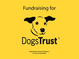 Fundraising for Dogs Trust logo